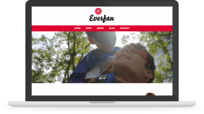 Everfan desktop website